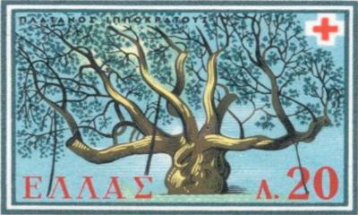 XVI. Colloquium Hippocraticum